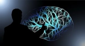 brain-3141247_1280_164